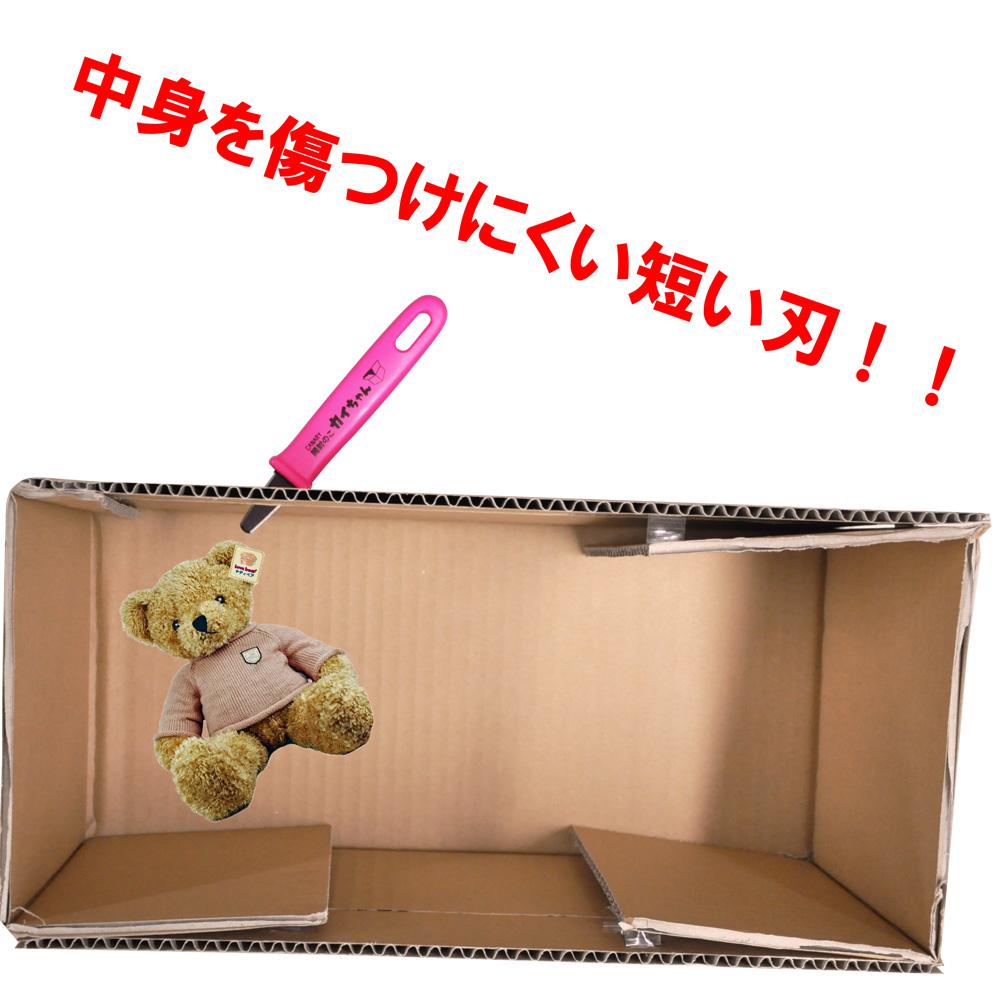 開封のこ カイちゃん フッ素コーティング